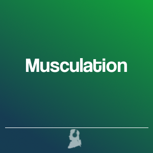 Picture of Musculation